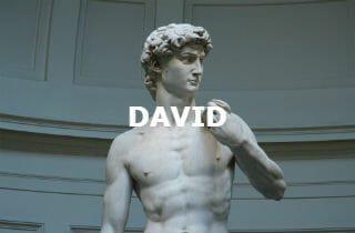 David tours