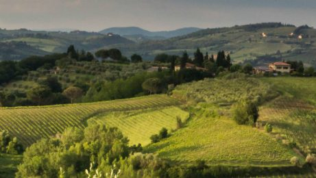 day trip to siena and chianti